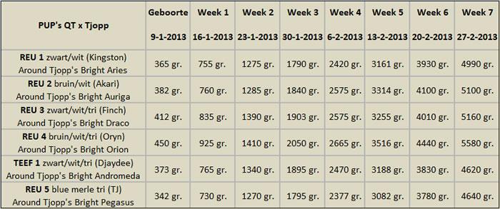 Gewichten Tabel